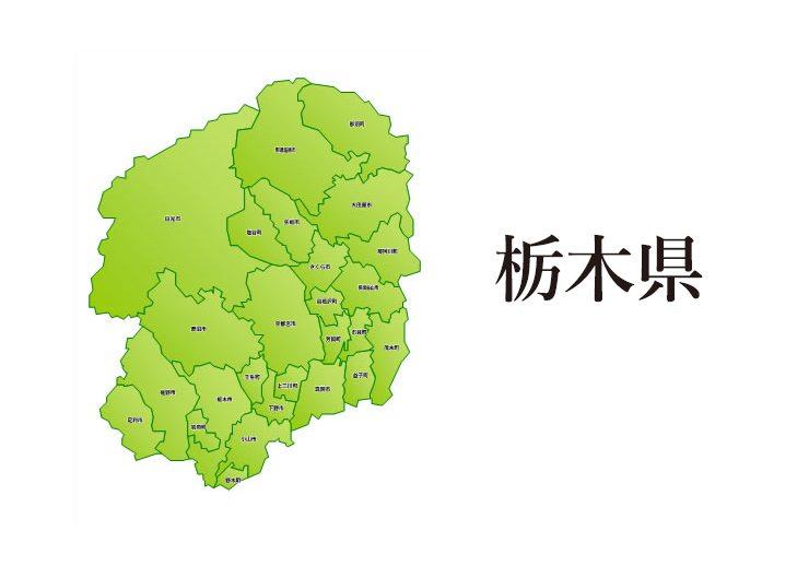 栃木県の平均年収【20代30代40代】や年収中央値や産業別年収推移